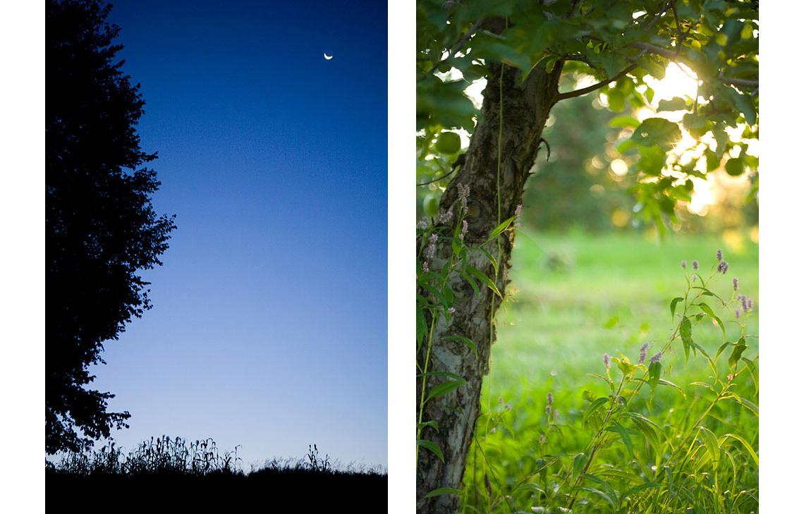Award-winning photographer Laurie Rhodes — farm photography — Portrait of a Farm #1